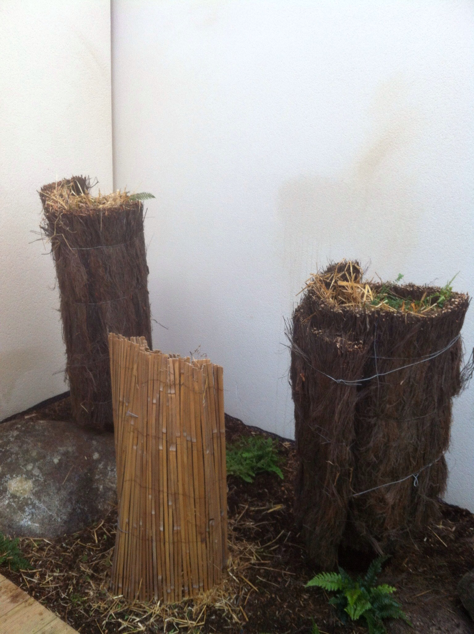 prot ger vos plantes exotiques du gel le blog de la maison du bananier. Black Bedroom Furniture Sets. Home Design Ideas